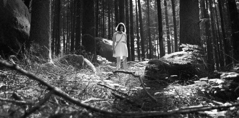 """""""The Forest of Lost Souls"""" Looks As Beautiful As it Does Melancholic"""